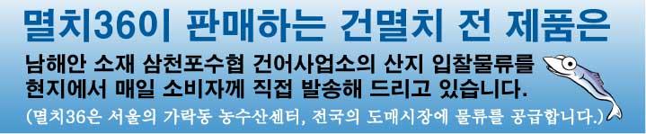 멸치경매 및 물류보급에대한 남해안멸치센터 배너
